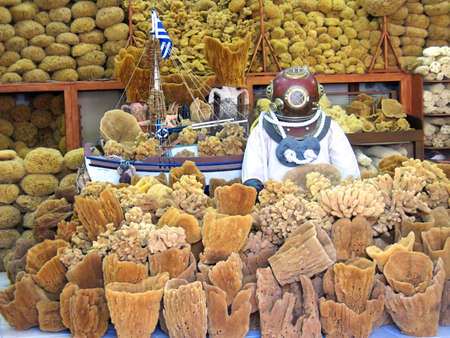 hygien: Many sea sponges round a figure of the diver