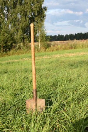 Shovel stuck in the field, overgrown with grass Stock Photo - 5420472