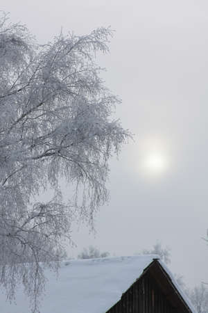 Winter in the village. Sun shines through the fog