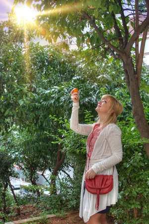 Beautiful blonde young woman and orange tree Stock Photo - 8581935