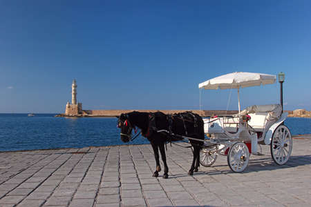 hitched: A black horse hitched to a white carriage on the promenade in Chania, Crete, Greece Stock Photo