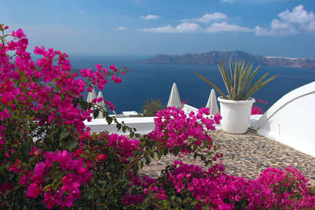 A nice terrace in Santorini island with bougainvillea flowers and the view over the caldera  Greece photo