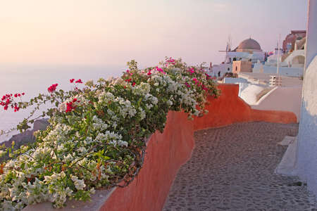 An alley in Oia village in the island of Santorini, Greece photo