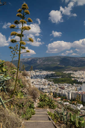 View to Athens from Lycabettus hill