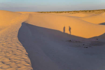 Shadows of two people walking dunes of Sahara desert at sunset, near Douz, Tunisia. Featuring wavy pattern created by wind Standard-Bild