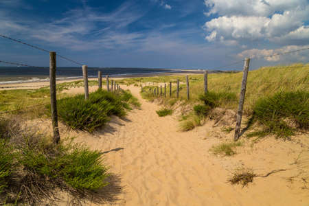 Sunny day on a beach in Holland