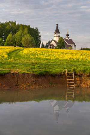 Russian orthodox church in a yellow field of blooming colza, also known as rapeseed (Brassica napus)