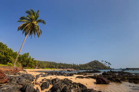 Tropical beach with rocks and palm trees