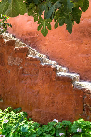 Steps on the wall of a garden