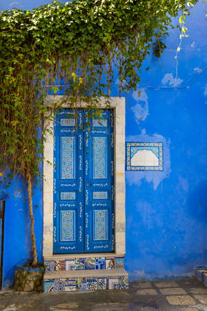Decorated door of a traditional house in Tunisia 免版税图像