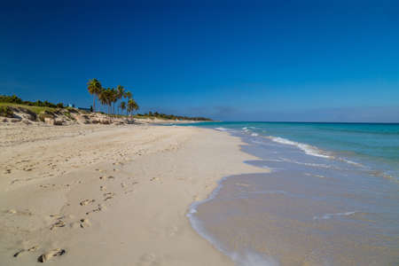 Tropical paradise beach with white sand and palm trees
