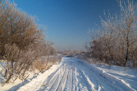 Snowy road across countryside. Hoarfrost on tree branches on a sunny winter day