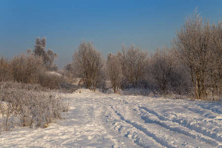 Snowy road leading to a village. Hoarfrost on tree branches on a sunny winter day
