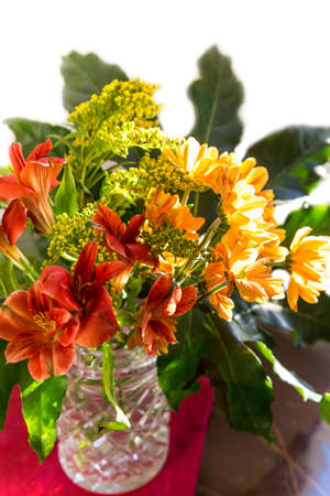 Bouquet of yellow, red and orange flowers lit by the sun. Chrysanthemum and goldenrod
