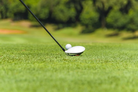 golf equipment: Golf equipment, golf ball with tee on course and stick