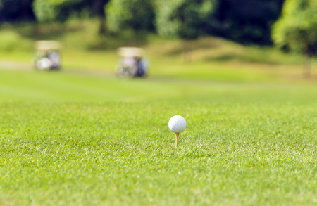golf glove: Golf equipment, golf ball with tee on course and stick