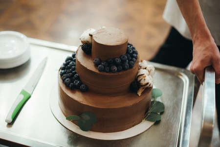 Homemade chocolate frosted cake decorated with fresh fruit