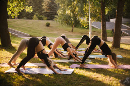 Group of young sporty people doing Adho Mukha Svanasana in city park at dawn