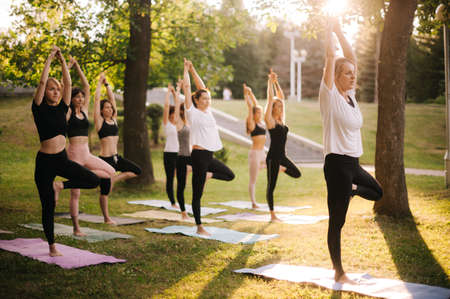 Group of concentrated young women are balancing on one leg with raised arm in tree pose in park while sunrise. Group of people in sportswear are standing yoga tree pose. Girls are meditating at dawn