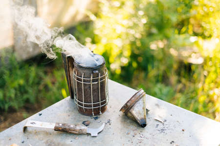 Close-up of bee smoker blowing smoke in wind against background of green grass and bright sunlight on summer day at beekeeper apiary.