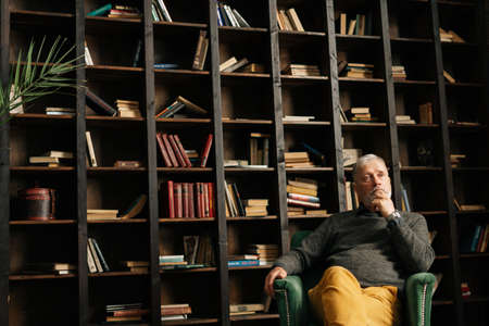 Shooting from below of pensive bearded gray-haired mature older male sitting in armchair at home and holding hand near chin, on background of bookshelves in cozy dark room with aristocratic interior. Archivio Fotografico