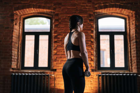 Medium shot of rear view of young athletic woman with beautiful strong body wearing activewear holding dumbbells during workout training. Caucasian fitness female workout out exercising in dark gym. Stock fotó