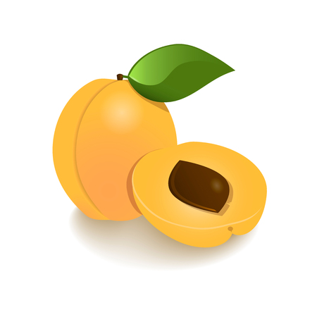 Set fruit icons with the image of apricot Illustration