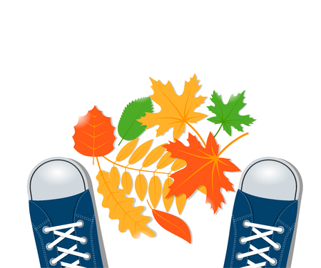 Sneakers and autumn leaves vector illustration