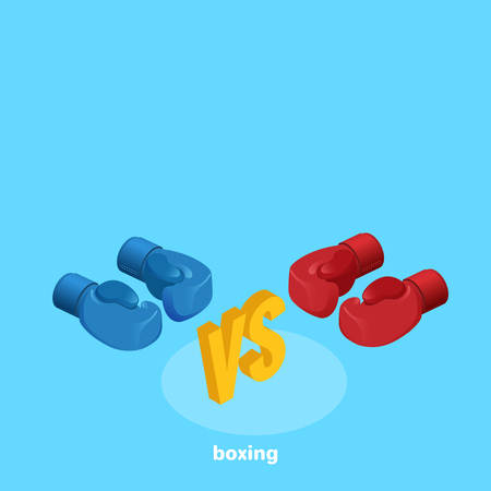 boxing gloves on a blue background, isometric image