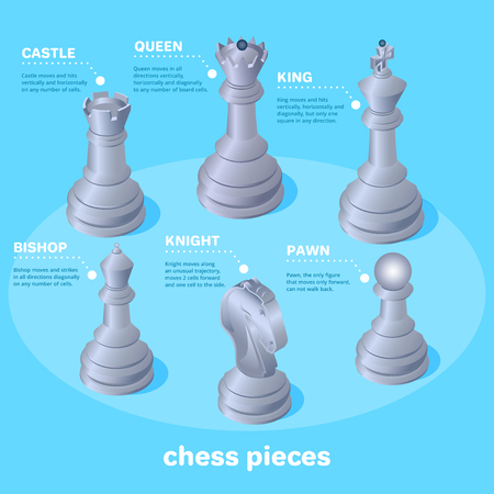 isometric vector image on a blue background, chess pieces and their names, school of chess