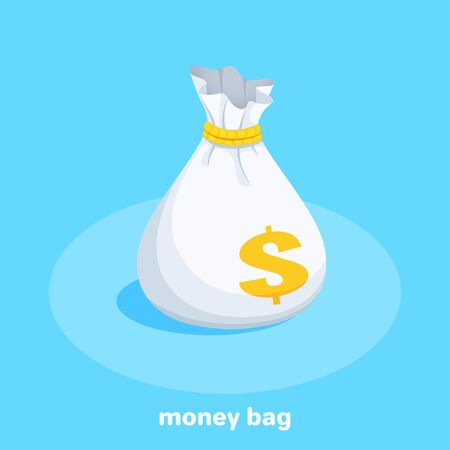 isometric vector image on a blue background, a bag of money, quick loan Ilustração