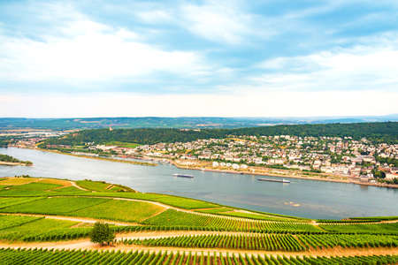 Aerial view of The River Rhine valley with large massives of vineyards alongside.