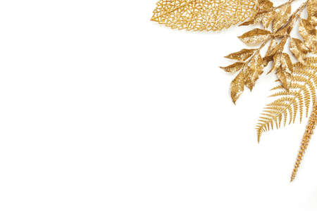 Various golden leaves over white background. Copy space. Zdjęcie Seryjne