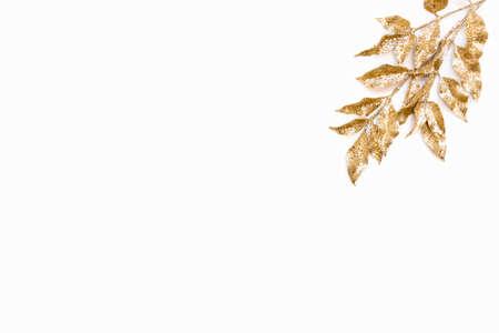 Golden laurel leaf over white background. Copy space.