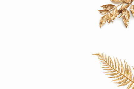 Golden laurel and fern leaves over white background. Copy space. Zdjęcie Seryjne
