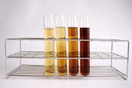 diluted: Diluted reagent in test tube
