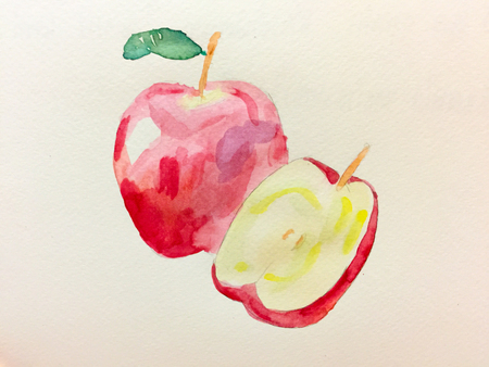 Apple Drawing by Watercolor