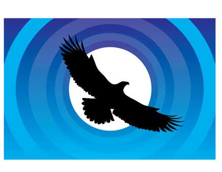 silhouette FUN BIRD Illustration