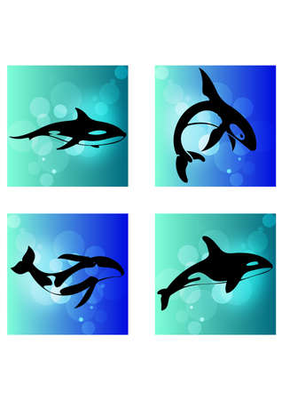 silhouette of whale Vector