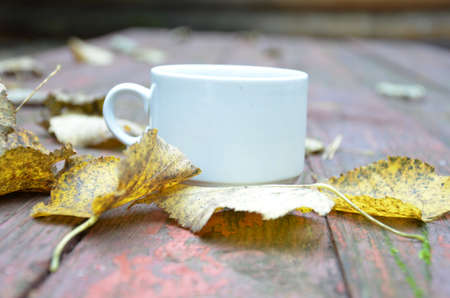 Cup of autumn tea (coffee, chocolate) and yellow dry leaves near, copy space. Hot drink for autumn cold rainy days. Hygge concept, autumn mood.