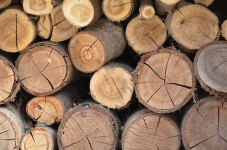 Texture of sawn logs. Natural neatly folded logs, flat lay Foto de archivo