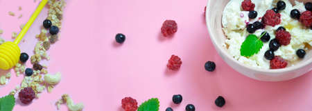 Ricotta with fresh berries and honey on pink table. Cottage cheese, curd cheese or tvorog with berries in bowl. Summer dessert, breakfast healthy keto diet, fitness nutrition banner, top view