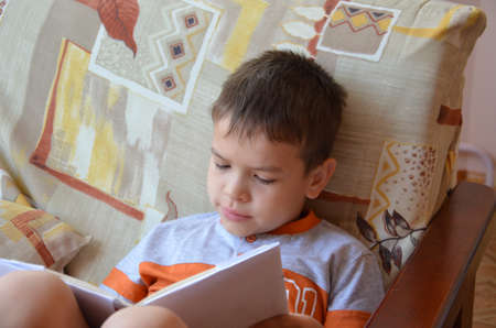 Boy reading a book at home.