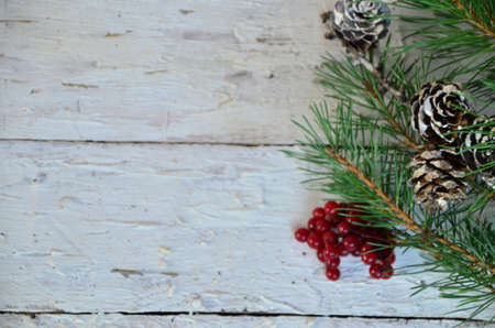 Merry Christmas and Happy New Year a branch of a Christmas tree with cones in the snow on a white wooden background with red berries then view flat lay copy space