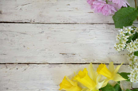 spring white and lilac or purple flowers on wooden white background and yellow daffodils. background for spring holidays. mothers day, easter Zdjęcie Seryjne