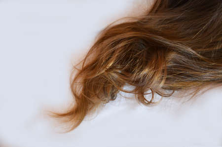 piece of brown hair on white isolated background healthy and shiny