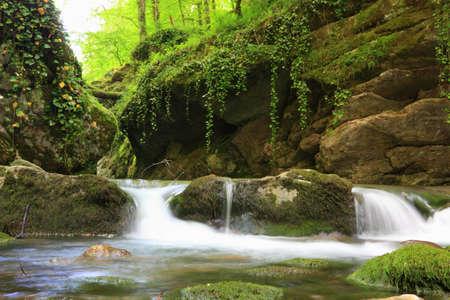 長引くシャッター スピードでコーカサス山脈の山中の森林小川の写真 写真素材