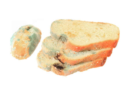 moldy: pieces of moldy bread on a white background