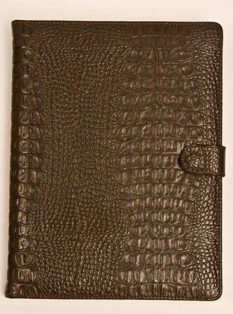 The book from brown crocodile skin on white background Stock Photo