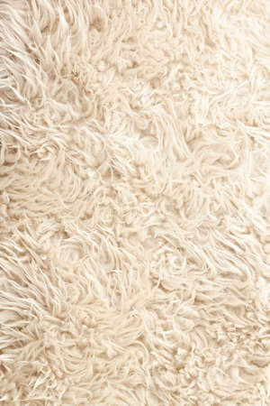 White curled sheep fur texture as background Stock Photo - 9800694